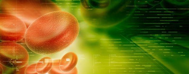 blood cells in digital design