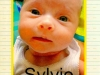 Sylvie born 12-12-14