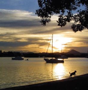 Sunshine Coast IVF Male Cancer Semen Test
