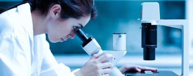scientist looking at embryo under a microscope