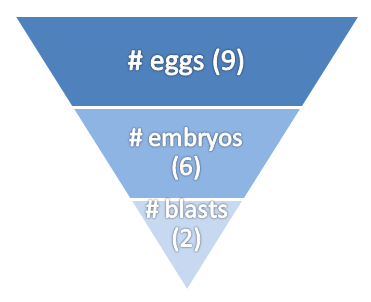 eggs embryos blasts attrition chart