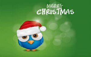 Merry Christmas from the staff at Fertility Solutions. Dealing with infertility at christmas and family gatherings.